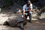 26_One_of_the_oldest_Aldabra_tortoises_(Aldabrachelys_gigantea)_in_the_reserve_which_is_called_Romeo