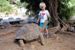 27_Feeding_the_tortoises_is_allowed