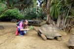 05_Having_quality_time_with_the_giant_tortoises_(Bettina_Pflugfelder-Plank)