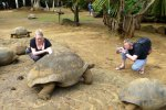 06_The_giant_Aldabra_tortoises_like_to_cuddle