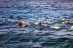 04_Snorkeling_on_the_west_side_of_Flat_Island
