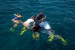 16_Tom_showing_the_kids_some_sea_and_feather_stars