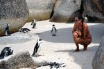 15_Getting_close_to_the_penguins_at_Boulders_Beach