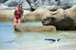 19_At_Boulders_Beach_you_can_even_go_in_the_water_with_the_penguins