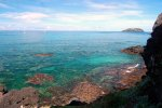 16_Close_to_shore_only_a_few_corals_are_alive_between_the_algae_(Makaroa)