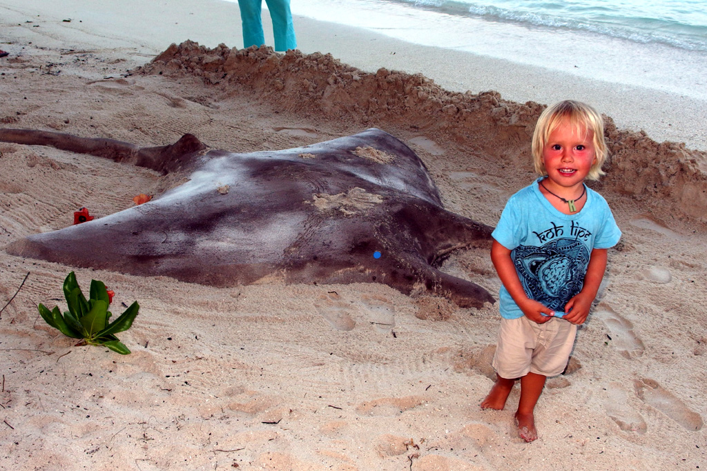 Manta ray made out of sand