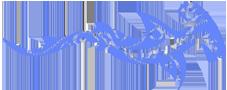 Planet Ocean - Meeresbiologie, Segeln, Tauchen